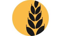 Lua Token logo